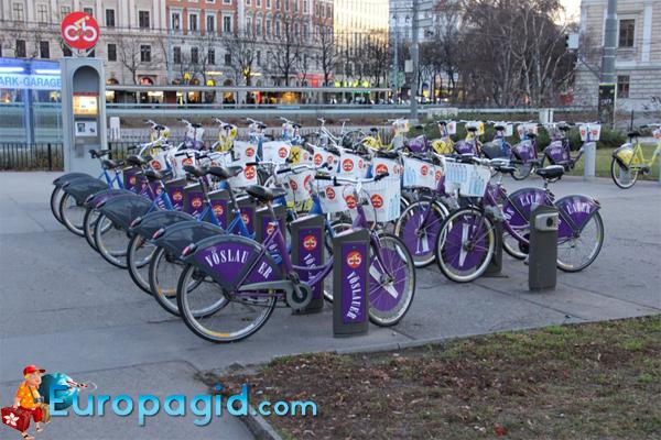 аренда велосипеде в Вене недорого