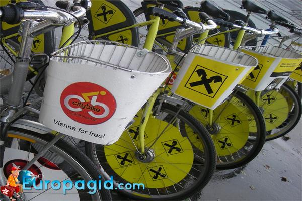 аренда велосипеде в Вене