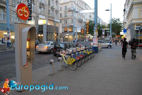 где взять в прокат велосипед в Вене