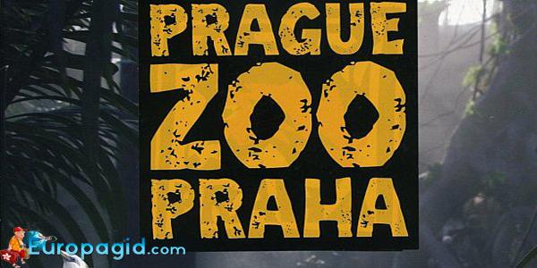 зоопарк в Праге как добраться