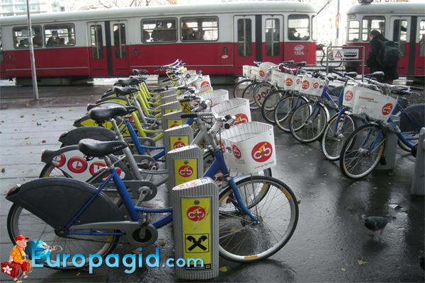 прокат велосипеда в Вене