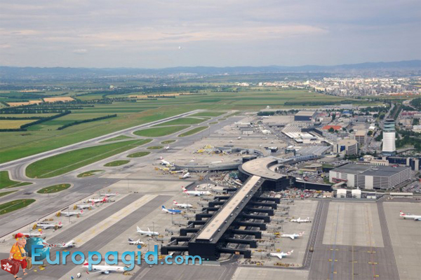 терминалы аэропорта Швехат
