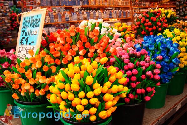 лучшие цветочные сувениры из Амстердама
