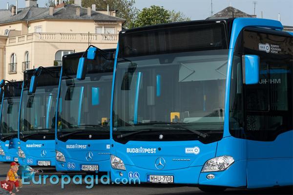 Автобусы в Будапеште