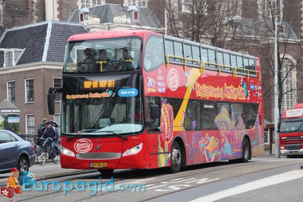 Городские автобусы в Амстердаме для туристов