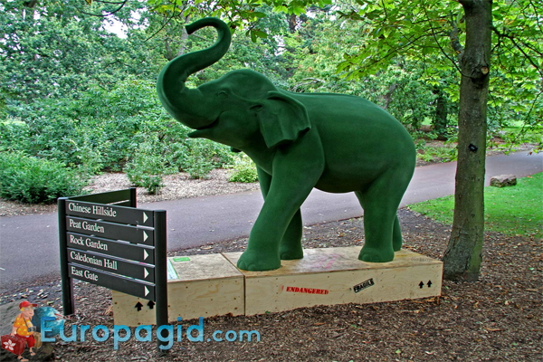 Королевский ботанический сад в Эдинбурге