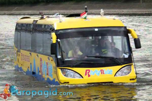 городские автобусы в Будапеште