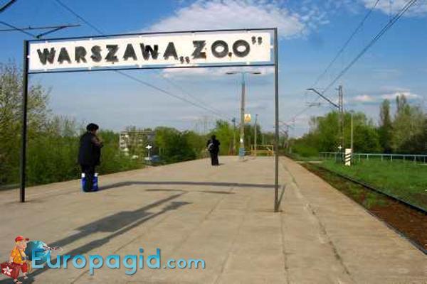 как добраться в зоопарк Варшавы