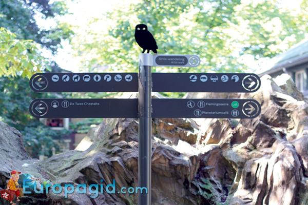 Зоопарк Артис в Амстердаме для вас