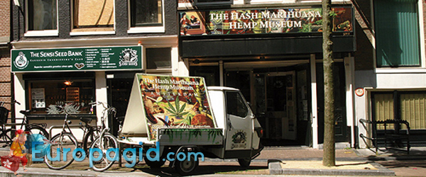музей марихуаны на карте