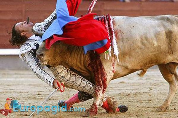 арена для быков в Мадриде