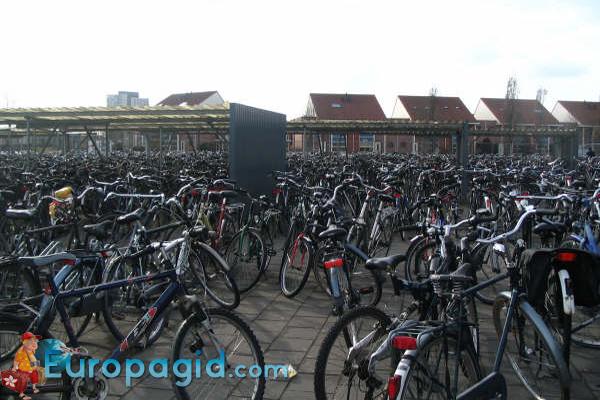 стоимость проката велосипедов в Мадриде