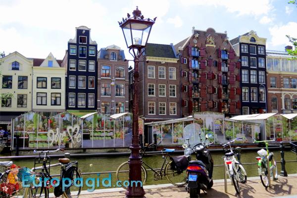 цветочный рынок Bloemenmarkt в Амстердаме