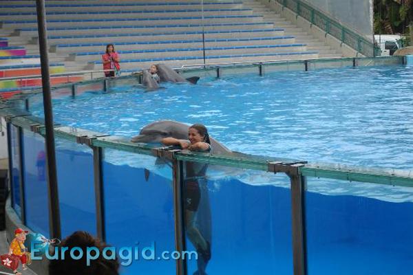 Лиссабонский зоопарк для вас