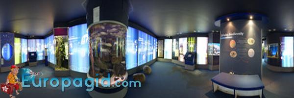 Лондонский зоопарк панорама