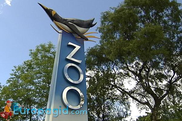 Эдинбургский зоопарк для вас