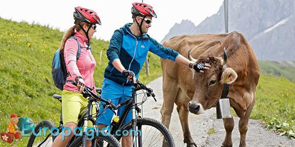 Как арендовать велосипед в Цюрихе все способы