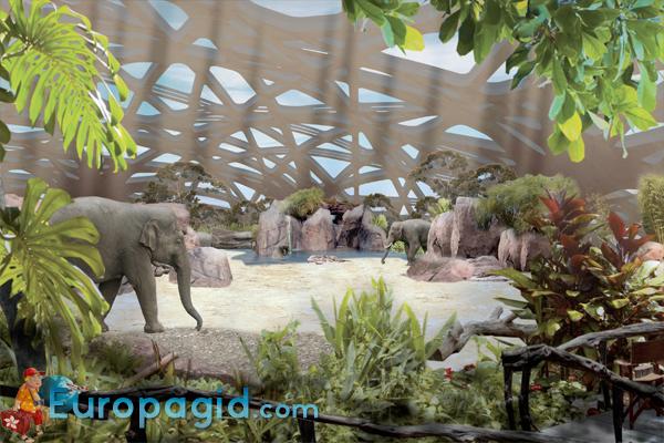 Зоопарк Цюриха – как добраться время работы и цена билетов